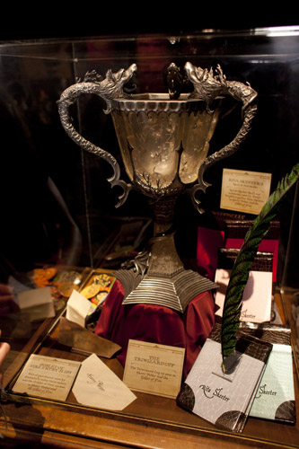 Items from the Goblet of Fire: the Triwizard Cup, Rita Skeeter's quill and notebooks, name slips from the goblet.